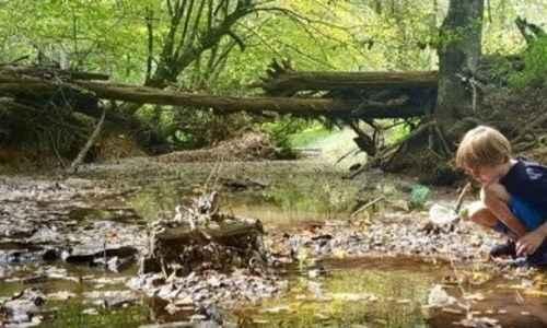 Tadpole Nature Camp