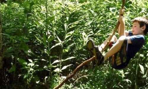 Lizard Nature Camp