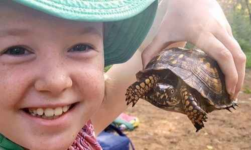 Reptile Wrangler Camp (Umstead Ampitheater)
