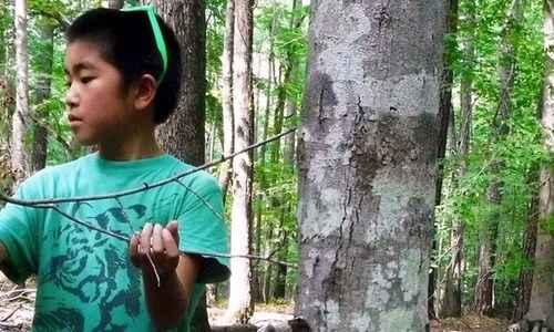 Squirrel Nature Camp