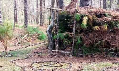 Brumley Bushcraft: Shelter and Fire