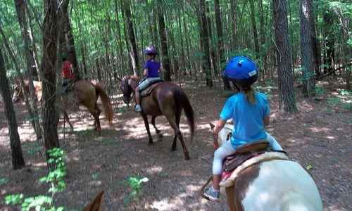 Track Out Horseback Riding Camp