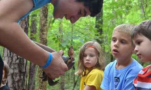 Nature Explorers Camp - Durham