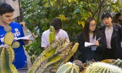 Biosciences & Engineering Camp for Middle School (Residential Camp)