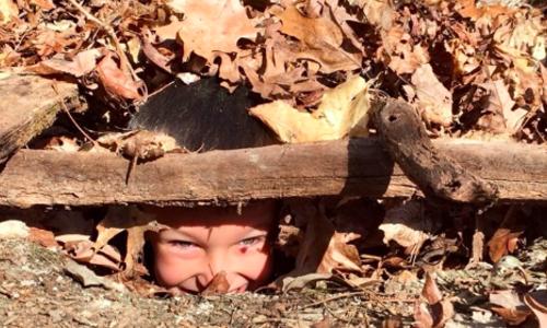Hide & Seek: Art of Camoflage